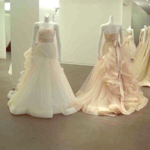 Vera wang for David's bridal wedding dress